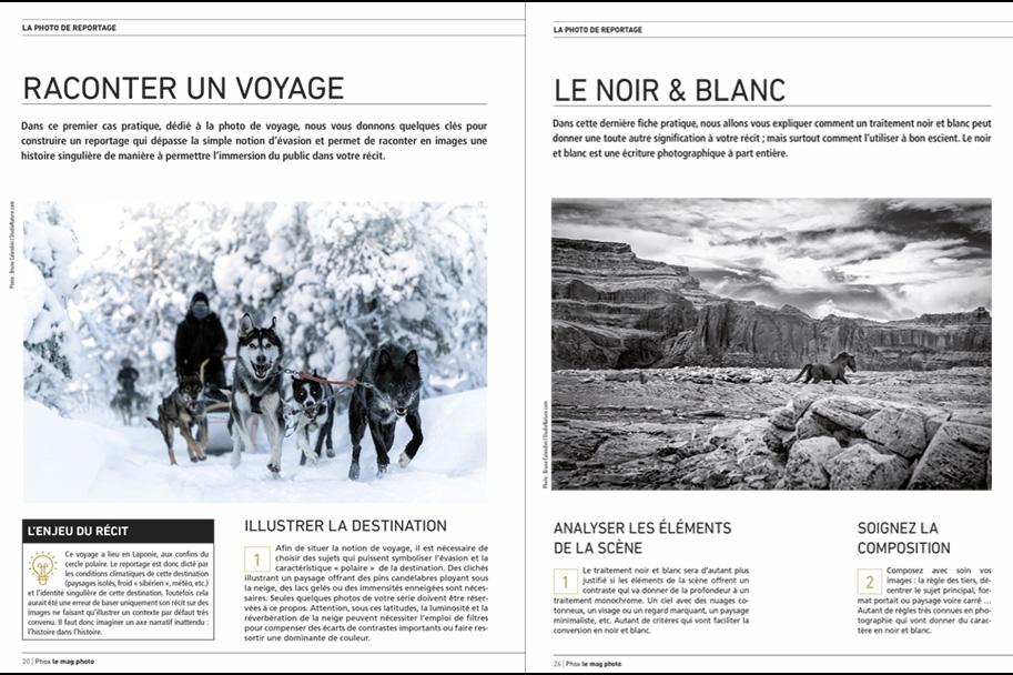 Phox le Mag - StudioNature